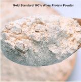 نوع ذهب معيار 100% مصال بروتين مسحوق لأنّ بناية & يصلح عضلات و [بونس]