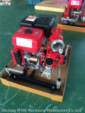 Treibstoff-motorangetriebene Feuer-Pumpe Jbq5.5/10 HP-13