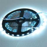 고품질 S자형 2835의 LED 유연한 지구 빛