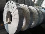Prodotti laminati a freddo dell'acciaio inossidabile (409)