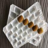 Anzeigen und umweltfreundliches pp.-Plastikwegwerftellersegment für Frucht