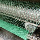 低炭素の鋼線の六角形の網