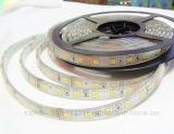 IEC/En62471를 가진 고품질 SMD5050 유연한 LED 지구 빛 60LEDs/M