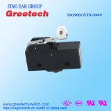 Interruptor 16A~26A da fonte de China Fatory grande micro
