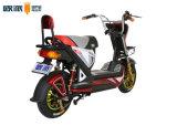 Freno di disco elettrico del motorino 800W della bici di Poweful E di sport 48V 20ah