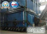 Het milieuvriendelijke Afval van de Palm, het Project van afval-aan-Enenrgy van het Residu van de Biomassa