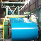 Dx52D Z30 PET beschichtete blaue Farbe Prepanited Stahlring für CPurlin
