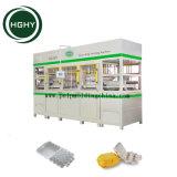 Pulpa de papel cartón de huevos Hghy máquina máquina de hacer las cajas de huevo