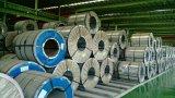 Prepainted катушка Gi стальная/цвет PPGI/PPGL покрыла гальванизированную стальную катушку