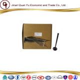Valvola di ammissione del motore diesel di Weichai Cina Vg1540050015