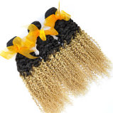 Migliore tessuto brasiliano di vendita dei capelli umani di estensioni 100% dei capelli di colore di Ombre