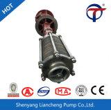 Double pompe verticale à plusieurs étages d'acier de moulage de pompe de pompe aspirante de la première phase Vs6