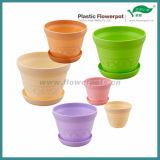 4つのカラープラスチック植木鉢(KD2601N-KD2603N)