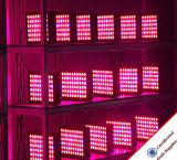 Hydroponic система 300W СИД растет светлой для парника