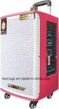 Feiyang/Temeisheng grande potência do alto-falante Bluetooth portátil de madeira com carrinho Gd12-02