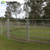 Comitato galvanizzato del cavallo del bestiame/comitato delle pecore/comitati del bestiame