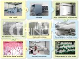 Handelspilzproduktionsbauernhof für Verkauf