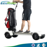 屋外にスポーツの新製品2018の電気移動性のスクーター