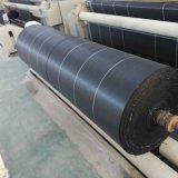 El ancho de gran tamaño personalizado Blanco & Negro tejido de polipropileno tejido Suelo Alfombra de hierba