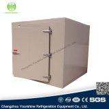 Conservación en cámara frigorífica de la talla pequeña y media de la buena calidad para los pescados