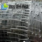 Il TUFFO caldo di vendita calda 2016 ha galvanizzato la fabbrica diretta del recinto di filo metallico di agricoltura