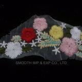 Bella tessile del collare delle signore del merletto del tessuto del ricamo del fiore colorata modo