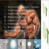 Heißes verkaufen99.9% Azetat der Reinheit-4-Chlorotestosterone/Clostebol Azetat CAS Nr.: 855-19-6