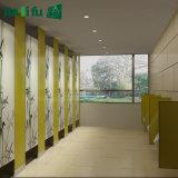 Assemblage de châssis en aluminium stratifié de qualité compacte Partition de toilette