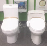 Toilet Bidet with Smart Functions