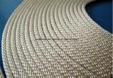中国の良質の二重層のMulti-Ply編みこみのロープ