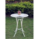 錬鉄のコーヒーテーブルの一定の旧式で白いカラー