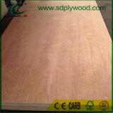El contrachapado de madera Bintangor comercial/madera contrachapada con 1220x2440X2-18mm