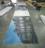 Aufbauende Verpackungs-Grafiken, die Zaun-Ineinander greifen-Fahne bekanntmachend hamstern