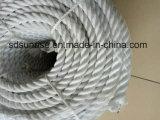 Puissante corde PP avec plomb