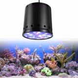 Iluminación completa vendedora caliente del espectro de la luz del acuario del filón coralino LED del LED