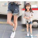 Nuova Shorts del denim strappati di stile vendita calda per le ragazze dai jeans della mosca