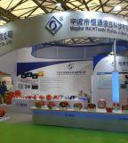 De Afblaasklep van de druk (dB Reeks) in China wordt gemaakt dat