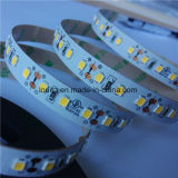 SMD 2835 120leds / M LED flexible Lámparas de Gaza