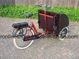250With500ワットの高齢者達のセリウムのための電気人力車の乗客のバイクスペース2台の前部またはタクシーのバイクまたはタクシーの三輪車かタクシーPedicab