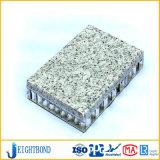 Panneau en aluminium de nid d'abeilles du meilleur des prix de la Chine granit de pierre pour le revêtement de mur