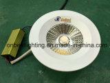Heiße verkaufenIP65 imprägniern hinunter Licht 20W LED Downlight