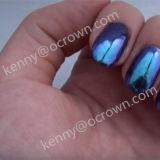 Chamäleon-Nagel-Perlen-Pigment Kameleon Pigment-Farben-Schaltpigment