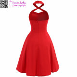 Lady Fashion Wear Sexy Dress (L51304-1)