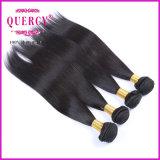 Armure 100% brésilienne de cheveux humains de Vierge en gros de la pente 10A d'usine