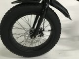 Grüne Energien-Rückseiten-Bewegungsfetter Gummireifen-elektrisches Fahrrad mit LCD-Ys-F0720f