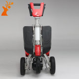 Hot Sale Transfoldable breveté à 3 roues scooter de mobilité