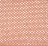 Meglio elegante svizzero che vende il commercio all'ingrosso bianco del tessuto del merletto del cotone per la signora