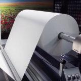 Alto documento di rullo enorme di trasferimento 66GSM per la l$signora Printer