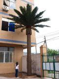 高品質の人工的なナツメヤシの木屋外の8メートルの