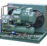 Bitzer 압축기 공기에 의하여 냉각되는 찬 룸 압축 단위/저온 저장 룸 모형 Spb12km